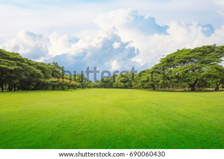 Green grass green trees in beautiful park white Cloud blue sky in noon. Beautiful park scene in public park with green grass field, green tree plant and a party cloudy blue sky #690060430