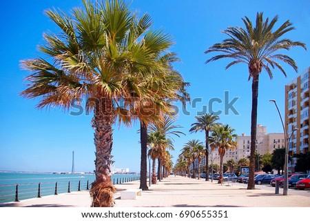 Bay of Cadiz, Andalusia. Spain #690655351
