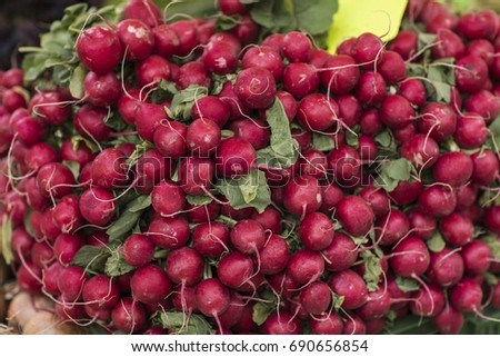 home grown English beetroot and red and yellow golden onion, fresh vegetable  #690656854