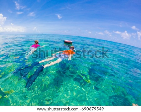 Snorkelling in Key West - Florida Marine Sanctuary  #690679549
