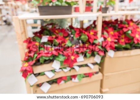 blur picture background of Christmas tree or Plastic Poinsettia plastic flowers display showroom in furniture mall