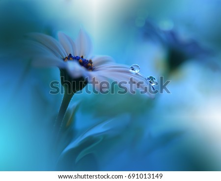 Beautiful Blue Nature Background.Tranquil Macro Photo. Amazing Spring Flower.Creative Design.Extreme Close up Artistic Photography.Conceptual Abstract Fantasy Floral Art.Classic Blue Pantone 2020.