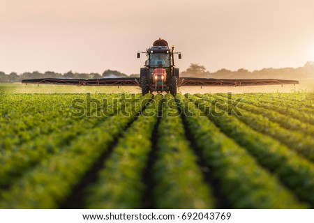 Tractor spraying pesticides on soybean field  with sprayer at spring Royalty-Free Stock Photo #692043769