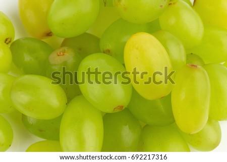 grape green background. #692217316
