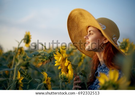 Field of sunflowers, a woman watching the sunset                                #692332513