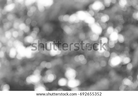 gray abstract light background #692655352