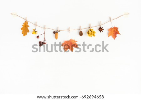 Autumn composition. Autumn flowers and leaves, acorn, pine cone, anise star. Flat lay, top view, copy space #692694658