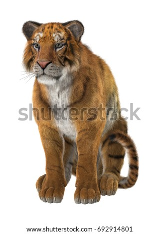 3D rendering of a big cat tiger isolated on white background #692914801
