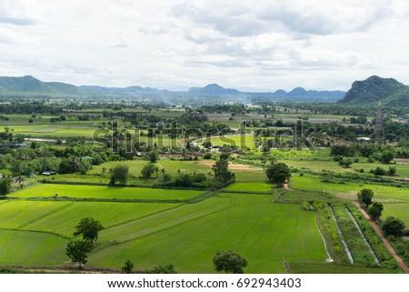 High angle rice fields beautiful sky #692943403