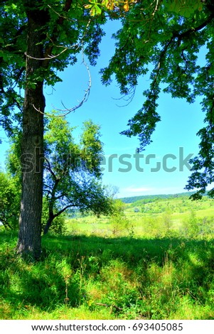 View of the Transylanian plain, in Romania. Landscape of the rural area in the midsummer in a sunny day #693405085