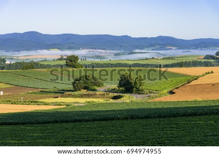 rural landscape in biei hills #694974955