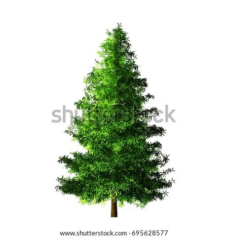 Tree isolated on white background #695628577