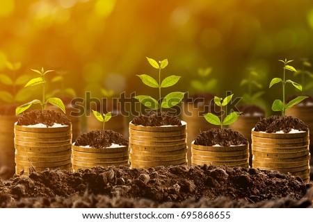Money growing in soil,success concept #695868655