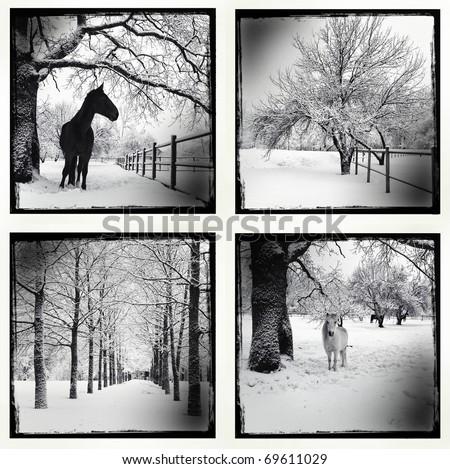 Monochrome picture of a winter set