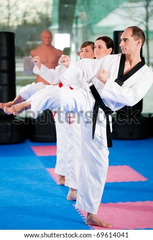 People in a gym in martial arts training exercising Taekwondo, the trainer has a black belt #69614041