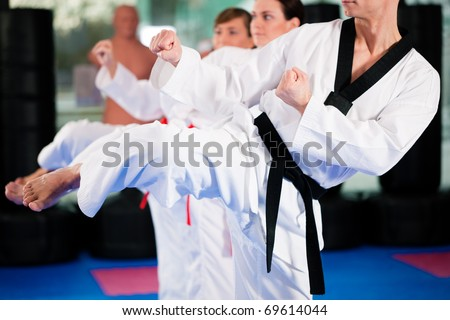 People in a gym in martial arts training exercising Taekwondo, the trainer has a black belt #69614044