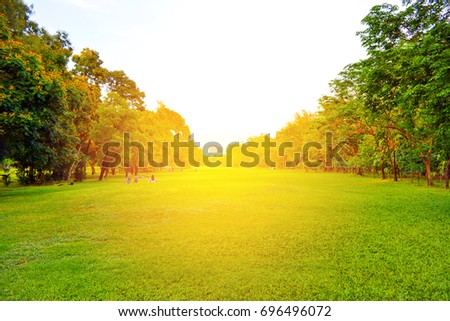 Bangkok,Thailand ,March,2013: Sunset in the park that time for people are relaxing and do activity together. #696496072