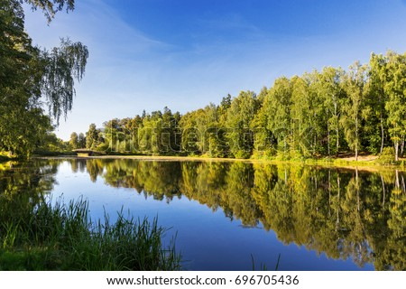 Natural summer background with birch trees in sunny day. Birches are reflected in lake water. Early autumn landscape. Russia. #696705436