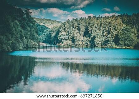 Woods #697271650