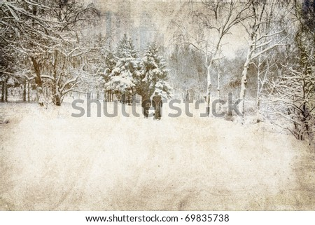 Snowy landscape .Photo in vintage image style.