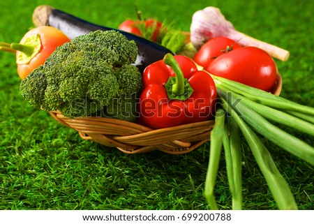 Fresh vegetables in a plate on the grass. Healthy food. Diet #699200788