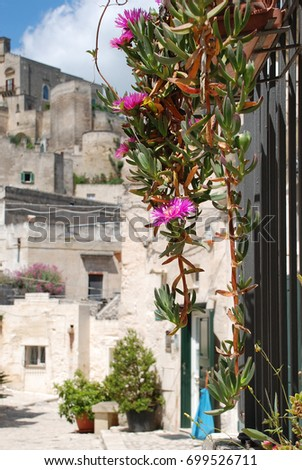 flowers hanging from balcony in matera italy #699526711