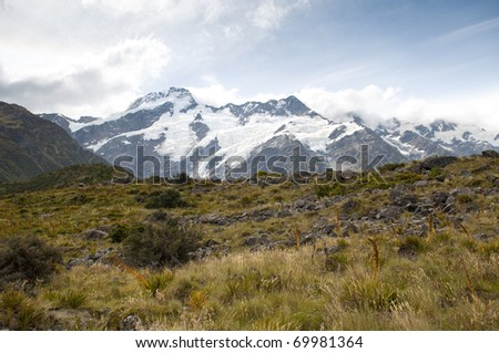 Glass field with Mount Cook, New Zealand #69981364
