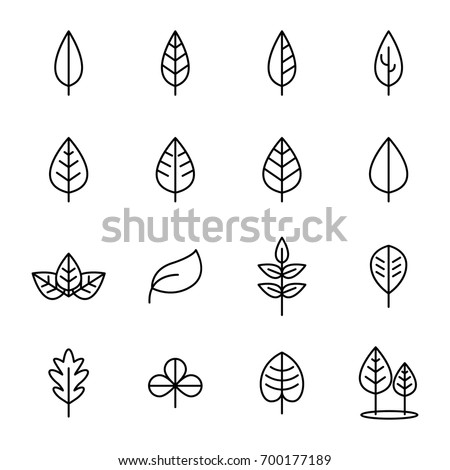 Simple Set of Leaf Related Vector Icons #700177189