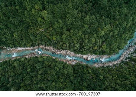 river flowing in the forest. Aerial view