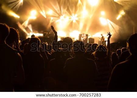 Concert visitors, Festival visitors #700257283