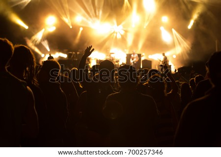 Concert visitors, Festival visitors #700257346