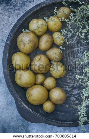 Potato on a plate, gray background #700805614