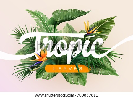 Bright tropical background with jungle plants. Exotic pattern with tropical leaves. Vector illustration