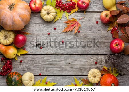 Autumn background with yellow maple leaves, red apples and pumpkins. Frame of fall harvest on aged wood with copy space. Mockup for seasonal offers and holiday post card, top view #701013067