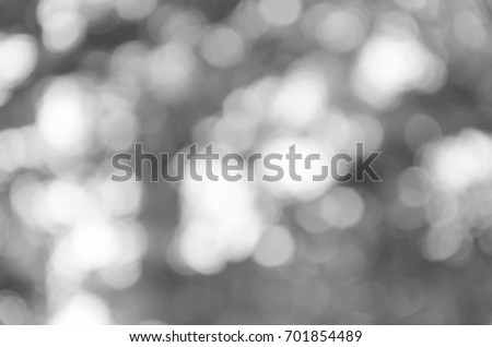 gray abstract light background #701854489