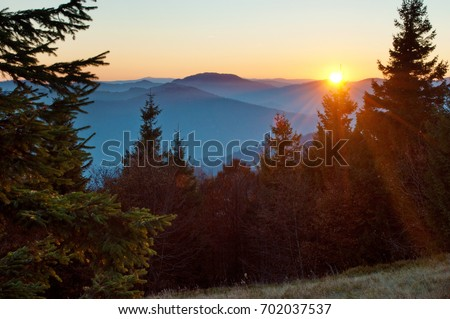 Rays of red sun setting among pines, spruce trees against smoky mountain range covered in purple grey mist under warm light cloudless sky on a warm fall evening in October. Carpathians, Ukraine #702037537