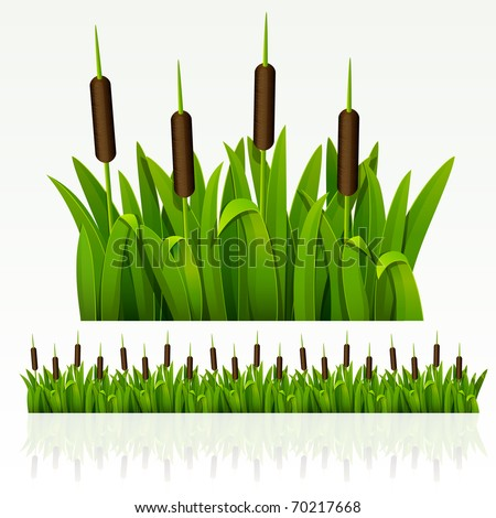 Raster version of vector grass green border from reed (can be repeated and scaled in any size)