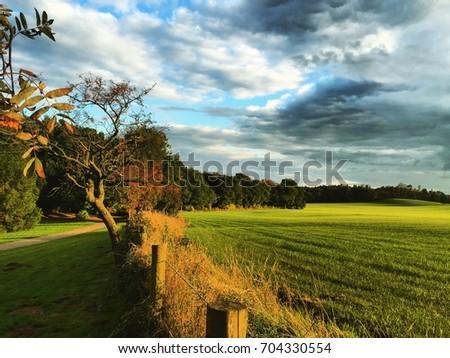Beautiful field in Keele University campus #704330554