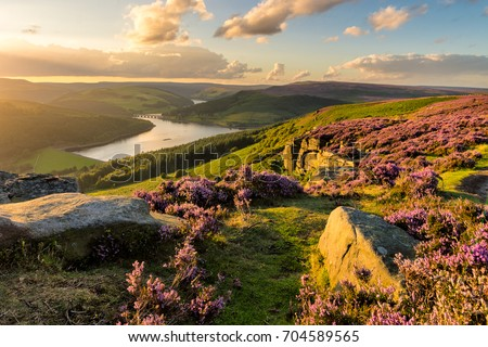 Beautiful evening light on a summer evening at Bamford Edge in the Peak District National Park. Royalty-Free Stock Photo #704589565