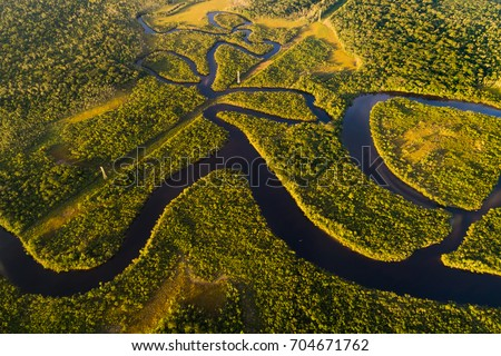 Amazon Rainforest in Brazil Royalty-Free Stock Photo #704671762