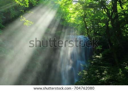 Summer kameda fudo waterfall #704762080