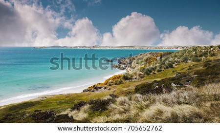 Shoreline of Falkland Islands. White sand beach and turquoise shallow water of Gypsy Cove, East Falkland Island. South Atlantic Ocean.  #705652762