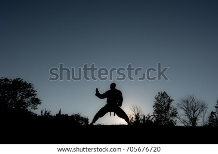 Martial Artists Silhouette - Knife Block Royalty-Free Stock Photo #705676720