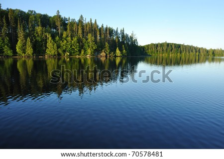 Reflections on the Coniferous Forest on a Wilderness Lake #70578481