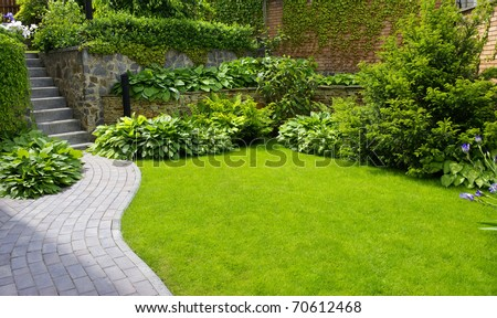 Garden stone path with grass growing up between the stones #70612468