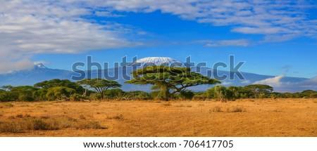 Kilimanjaro mountain Tanzania snow capped under cloudy blue skies captured whist on safari in Africa Kenya. Royalty-Free Stock Photo #706417705