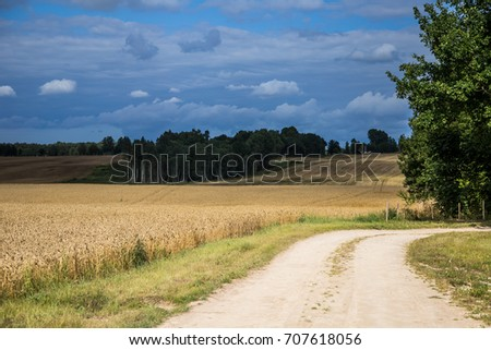 A beautiful country landscape with a wheat fields stretching into distance. Inspiring rural scenery at the end of summer. #707618056