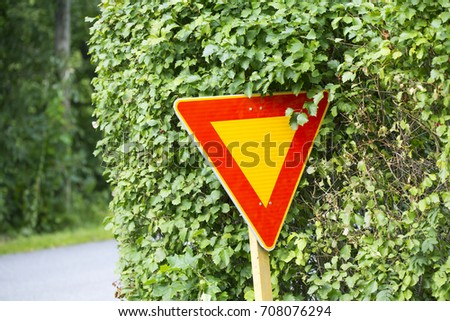 Brand new yield sign in the bushes on an intersection. The bush is covering a bit of the sign.