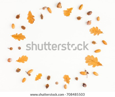 Autumn composition. Frame made of autumn oak tree leaves and pine cones on white background. Flat lay, top view, copy space #708485503