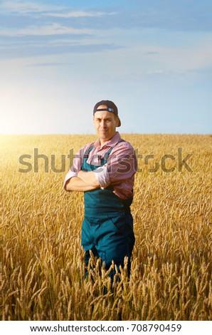 Farmer inspecting wheat field summer sunny day #708790459